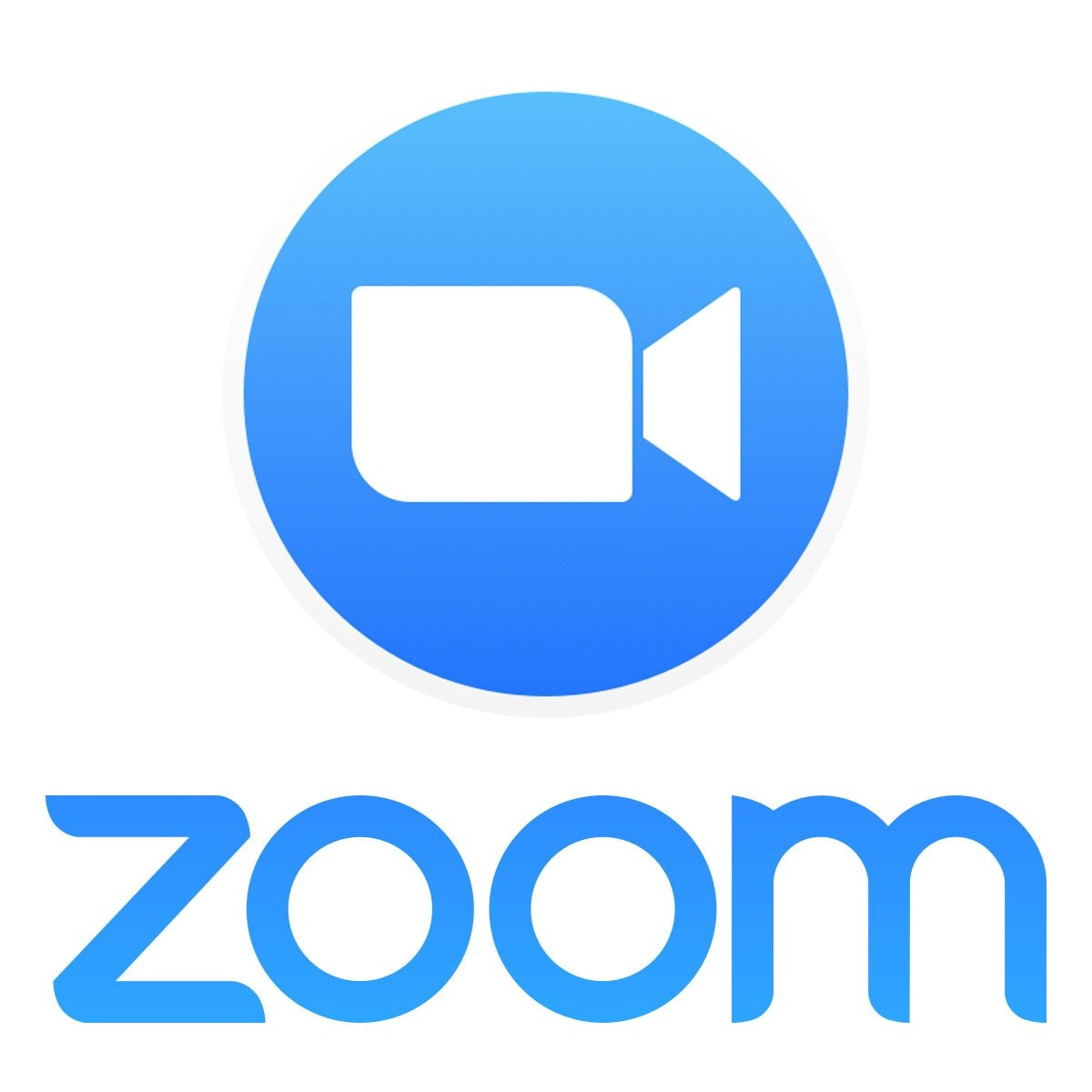 Zoom Pro Annually 2